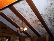mold-ceiling